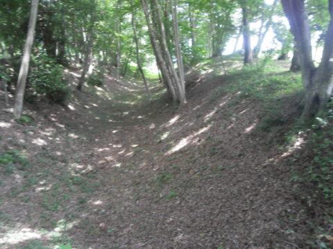 飛山城史跡公園5号堀