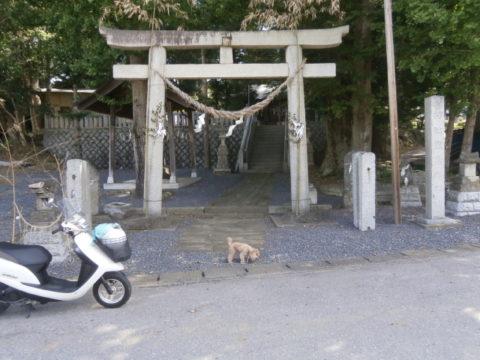 村杜鹿島神社鳥居