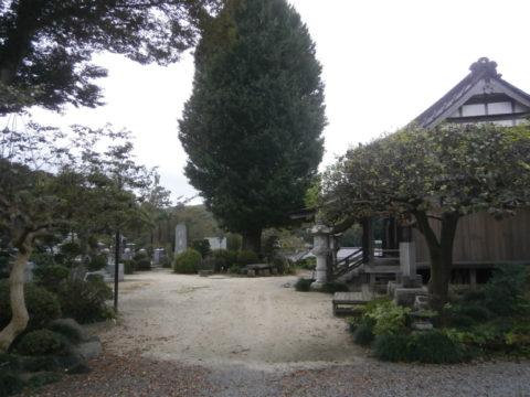 益子町長谷寺大銀杏と境内