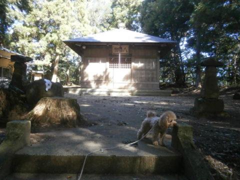 河井八幡神社拝殿