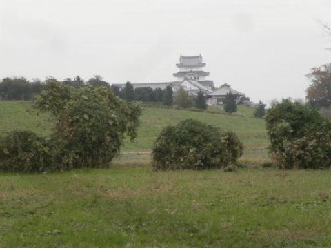 関宿城跡と博物館