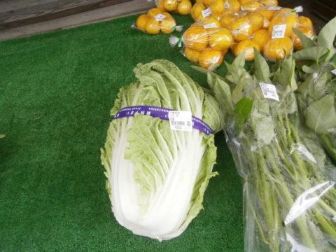 道の駅ながらの白菜
