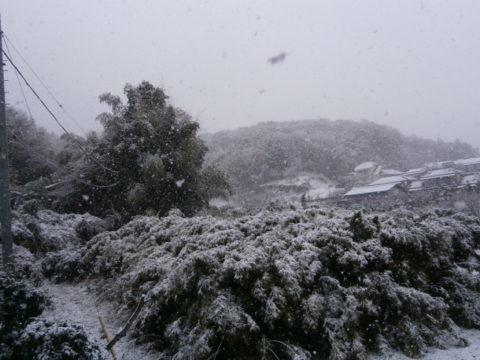 2016里山の初積雪