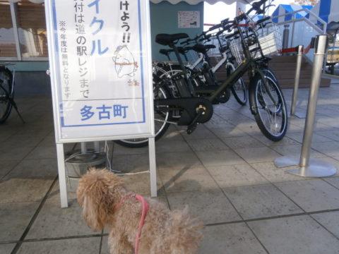 道の駅多古貸し自転車無料