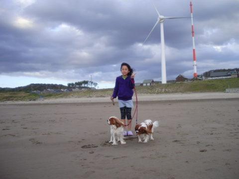 道の駅いわき風力発電機
