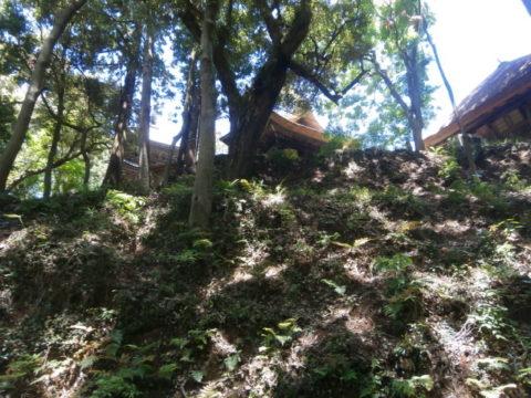 西明寺三重の塔