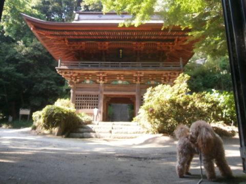 小山寺(富谷観音)門