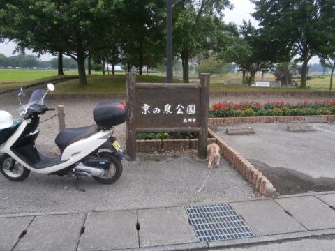 京の泉公園案内板