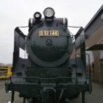 D51146エンブレム