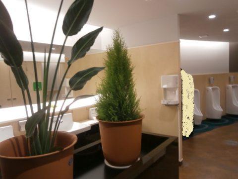 道の駅あさひ極綺麗なトイレ