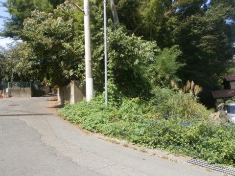 下館城と小学校の間の道路