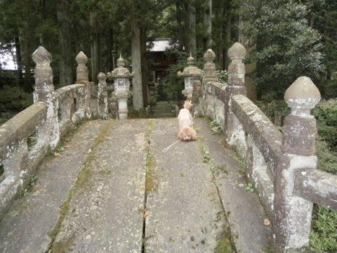 寺山観音寺石の太鼓橋