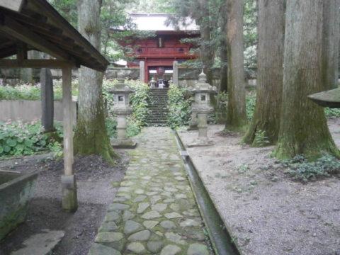 寺山観音寺緑の苔に覆われた参道