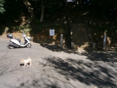 河井八幡神社駐車場