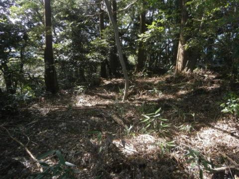 河井八幡神社右の遺構