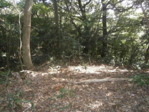 河井八幡神社左の遺構