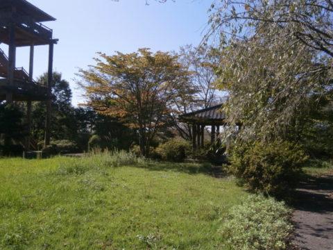 本丸跡地の公園広場