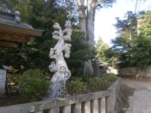 野木神社の大欅