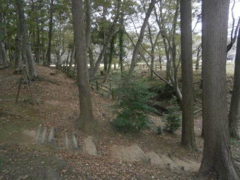 逆井城主郭と二郭の間の堀