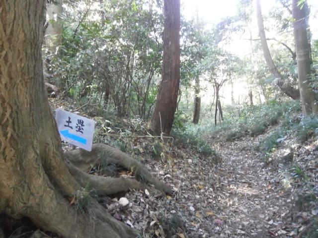 神社南の堀